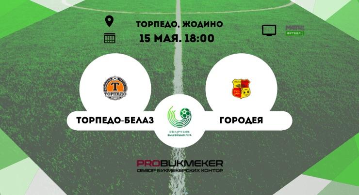 Торпедо-БелАЗ - Городея